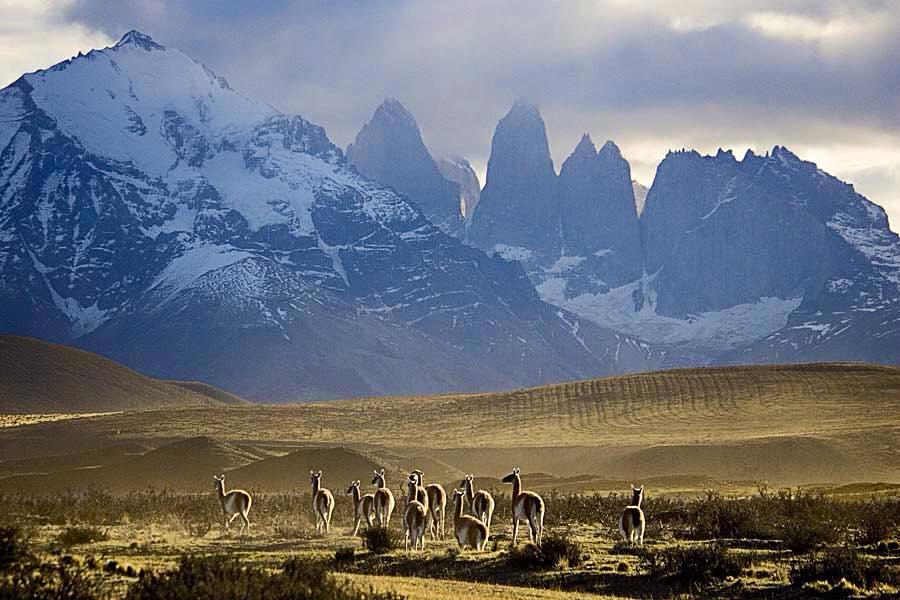 Tournée en Amérique du Sud